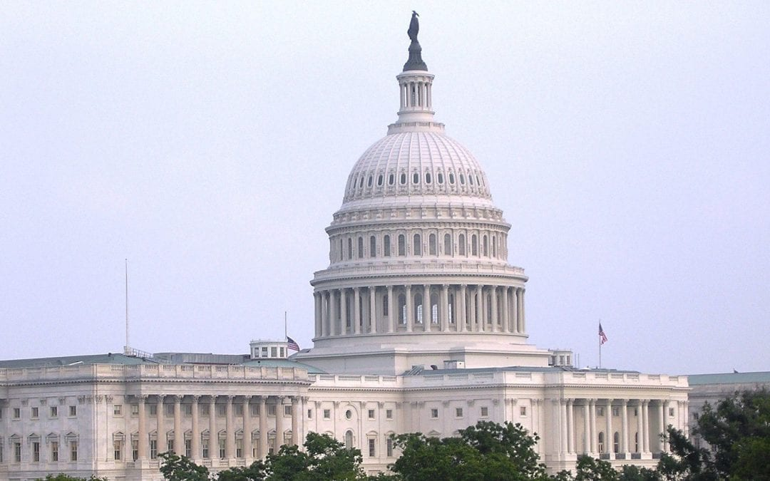 Students For Liberty condemns the violence at the US Capitol