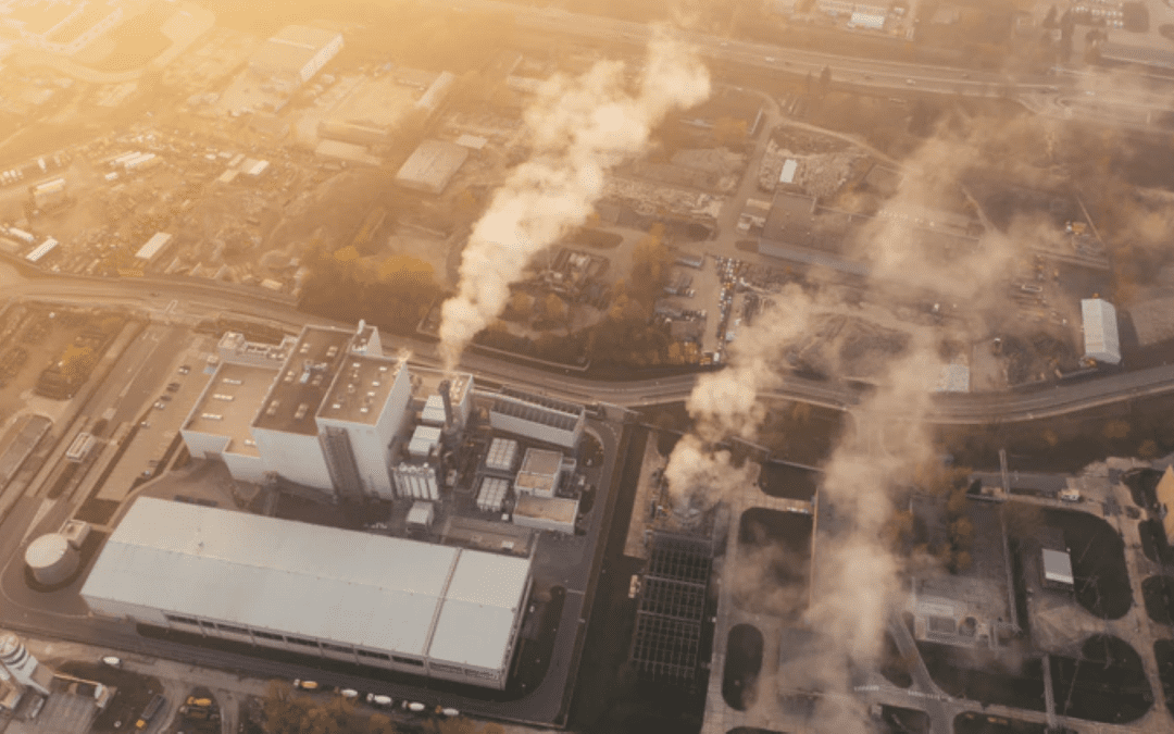 Innovation is the solution to the carbon crisis