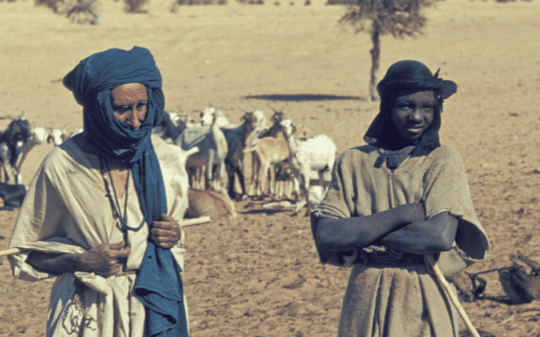 How innovation in the insurance industry could help East Africa's pastoralists